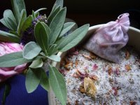 Bild zu Kräuterakademie Nürnberg: Kräuterverwöhnzeit für Frauen