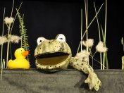 Das Krokodil im Entenweiher