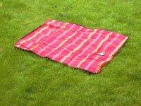 Bild zu LeckerSchmeckerTage mit Picknickausflug