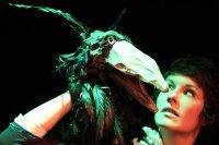 Bild zu Nürnberger Kindertheaterreihe: Die kleine Hexe