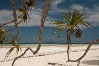 Bild zu TravelTalk - Reif für die Insel