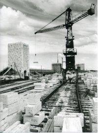 Das Märzfeld 1900 bis 1970