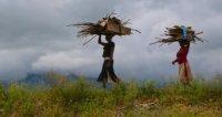 Bild zu TravelTalk - Uganda